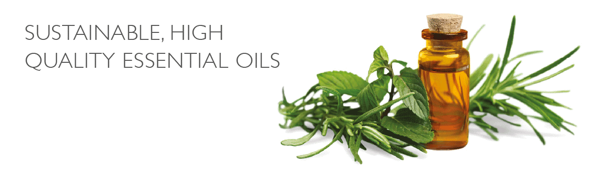 Scatters Sustainable High Quality Essential Oils